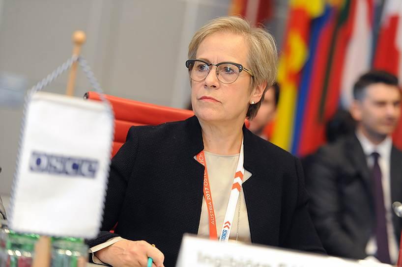 Делегация РФ на полях зимней сессии ПА ОБСЕ в Вене провела встречу с директором БДИПЧ ОБСЕ