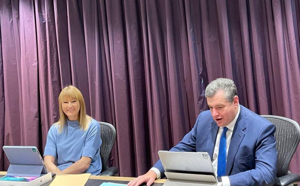Заседание Комитета по международным делам 27 января 2021 года
